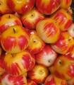 Pomme rouge en pâte d'amandes